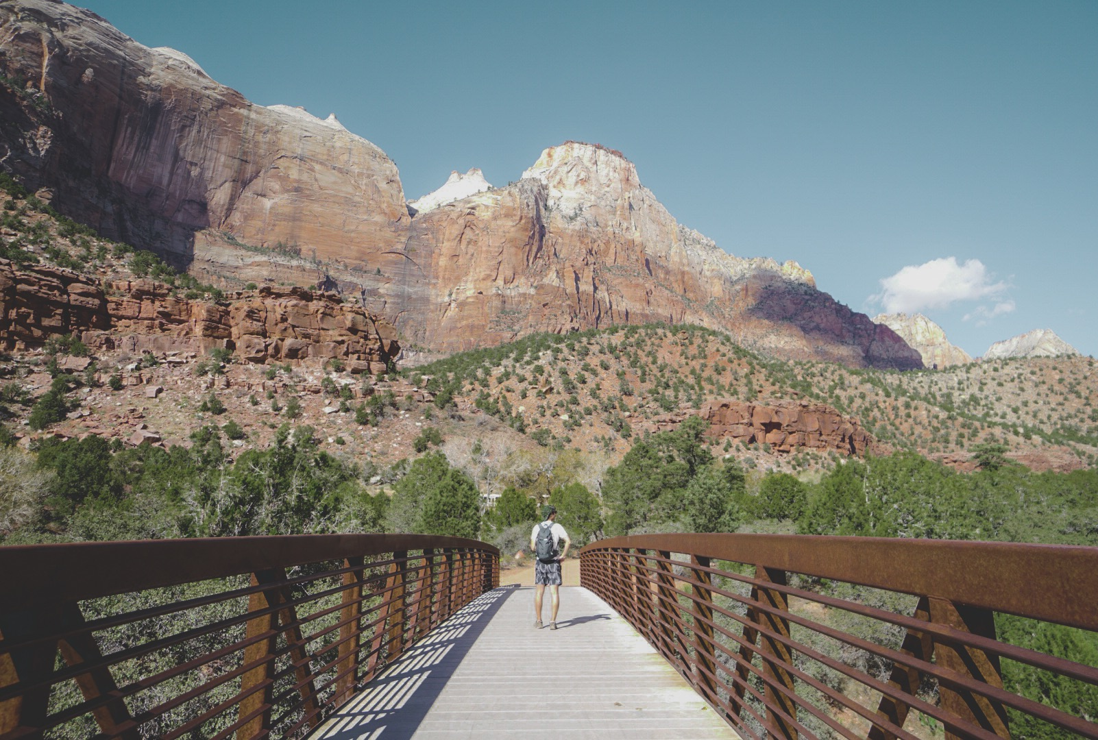 HIKING ZION NATIONAL PARK | The trails, wildlife, food and